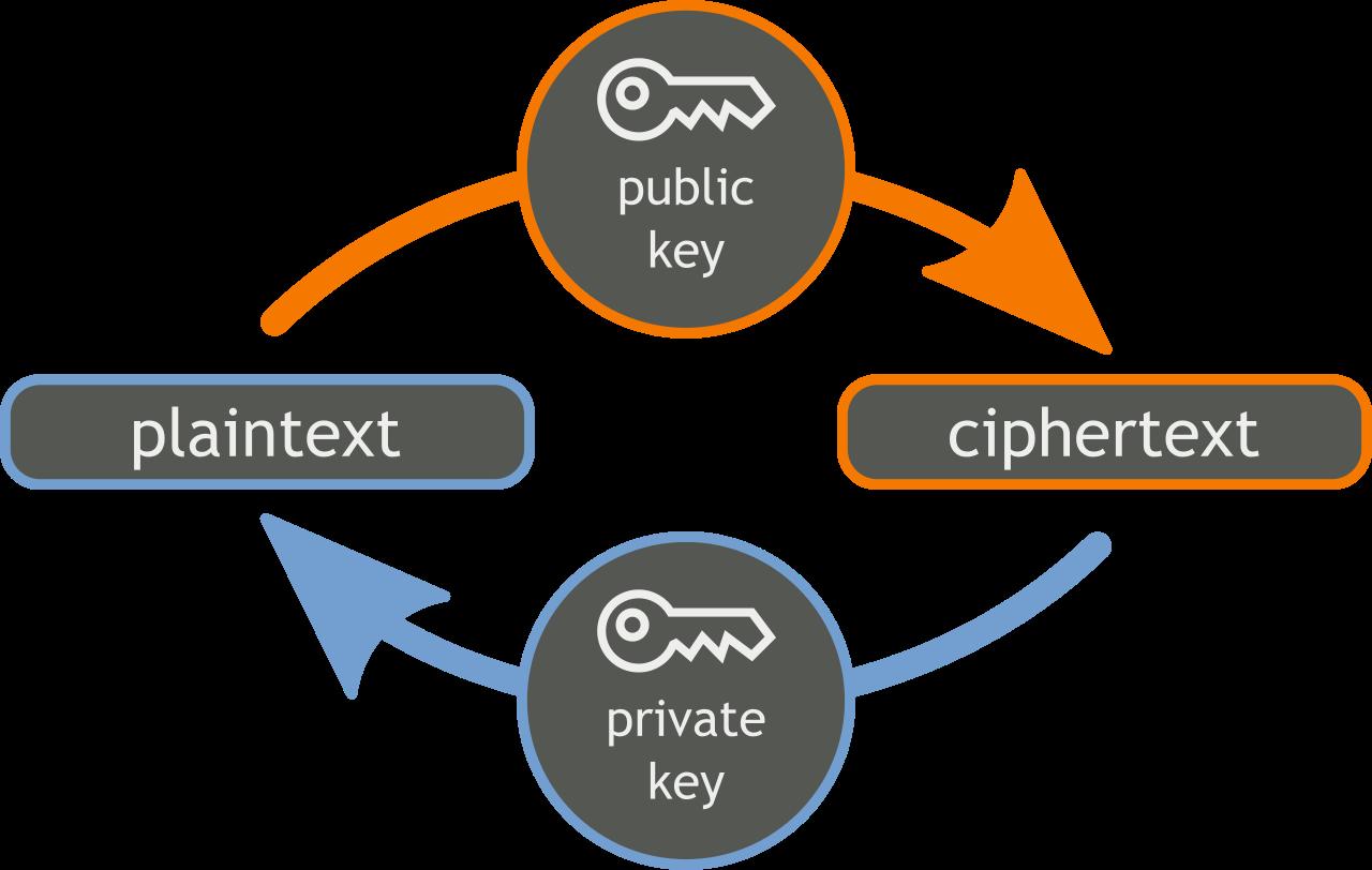 کلید عمومی Public Key